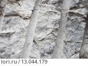 Купить «Необработанный мрамор, фон», фото № 13044179, снято 8 ноября 2015 г. (c) Наталия Макарова / Фотобанк Лори