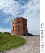 Башня Гедимина, Вильнюс (2012 год). Стоковое фото, фотограф Игорь Буранок / Фотобанк Лори