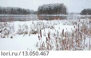 Купить «Снегопад на лесном зимнем озере, открытая вода и высохший тростник на берегу. Карелия», видеоролик № 13050467, снято 11 ноября 2015 г. (c) Кекяляйнен Андрей / Фотобанк Лори