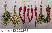 Травы и специи висят на веревке. Стоковое фото, фотограф Глыцко Андрей / Фотобанк Лори