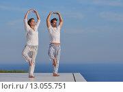 Купить «young couple practicing yoga», фото № 13055751, снято 21 января 2019 г. (c) PantherMedia / Фотобанк Лори