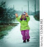 Купить «Первый снег», фото № 13064983, снято 6 декабря 2013 г. (c) Инна Шепетя / Фотобанк Лори