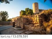 Купить «Замок Бельвер на острове Мальорка, Испания», фото № 13078591, снято 22 июля 2015 г. (c) Роман Гадицкий / Фотобанк Лори