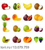 Купить «Набор рисунков фруктов», иллюстрация № 13079759 (c) Ирина Иглина / Фотобанк Лори