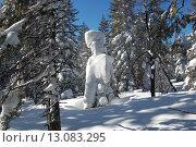 Купить «Зимний лес, скульптуры из снега, Таганай, ели в снегу», фото № 13083295, снято 10 марта 2013 г. (c) Юрий Карачев / Фотобанк Лори
