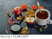 Купить «Сухоцвет, листья, яблоко, чашка чая», эксклюзивное фото № 13083419, снято 19 ноября 2015 г. (c) Юрий Шурчков / Фотобанк Лори