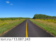 Купить «Rural asphalt road with markings that goes into the woods and passing through a meadow», фото № 13087243, снято 18 июня 2019 г. (c) PantherMedia / Фотобанк Лори