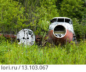 Abandoned seaplane in a forest. Стоковое фото, фотограф Keith Levit / Ingram Publishing / Фотобанк Лори