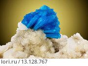 Купить «Blue cavansite mineral on stilbite mineral, habitat: Wagholi, India, 1999, bigness: 6 cm, weight: 100 gram,», фото № 13128767, снято 6 февраля 2020 г. (c) age Fotostock / Фотобанк Лори