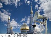 Купить «Одна из крупнейших мечетей России и Европы, Московская соборная мечеть», фото № 13169683, снято 6 ноября 2015 г. (c) Владимир Журавлев / Фотобанк Лори