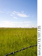 Купить «Barbed wire with field and blue sky», фото № 13197135, снято 25 мая 2008 г. (c) age Fotostock / Фотобанк Лори
