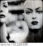 Купить «Mannequins», фото № 13229035, снято 20 января 2020 г. (c) age Fotostock / Фотобанк Лори