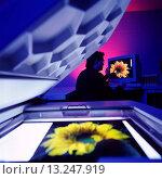 Купить «Scanner», фото № 13247919, снято 22 февраля 2018 г. (c) age Fotostock / Фотобанк Лори