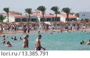 Пляж, заполненный людьми, на территории отеля первой линии. Курорт Хургада, Египет (2015 год). Редакционное видео, видеограф Кекяляйнен Андрей / Фотобанк Лори