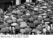 Купить «A crowd of believers walk down the street during a rainy day of Good Friday Easter in Manaus, Brazil  Amazonia is the world´s largest dense tropical forest...», фото № 13427539, снято 13 октября 2019 г. (c) age Fotostock / Фотобанк Лори
