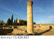 Купить «Pollentia deposit, La Portella, century BC, Alcudia Mallorca, Spain Balearic Islands», фото № 13428667, снято 17 февраля 2009 г. (c) age Fotostock / Фотобанк Лори