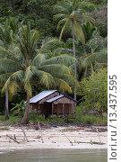 Купить «Fishing shack and coconut palms _ KO PHRATHONG ISLAND, THAILAND», фото № 13437595, снято 24 апреля 2019 г. (c) age Fotostock / Фотобанк Лори