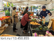 Купить «New York City, NY, USA, Male Clerk Working at Food Stalls, Fresh, Local Fruit, Farmer´s Market, in Greenwich Village, ´Abingdon Square´», фото № 13450855, снято 20 ноября 2018 г. (c) age Fotostock / Фотобанк Лори