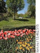Купить «New York City, the Brooklyn Botanic Garden in Spring», фото № 13462515, снято 29 апреля 2006 г. (c) age Fotostock / Фотобанк Лори