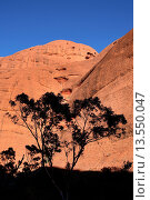 Купить «Kata Tjuta The Olgas, Central Australia», фото № 13550047, снято 25 мая 2009 г. (c) age Fotostock / Фотобанк Лори