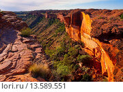 Купить «Kings Canyon, Northern Territory, Australia, Pacific», фото № 13589551, снято 8 мая 2020 г. (c) age Fotostock / Фотобанк Лори