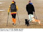 Купить «Couple hiking on beach in winter, Netherlands», фото № 13589827, снято 24 июня 2019 г. (c) age Fotostock / Фотобанк Лори
