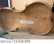 Купить «Stradivarius violin casing.», фото № 13620859, снято 28 мая 2018 г. (c) age Fotostock / Фотобанк Лори