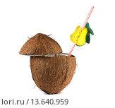 Купить «Кокосовый орех с трубочкой для коктейля», фото № 13640959, снято 24 ноября 2015 г. (c) Дрогавцева Оксана / Фотобанк Лори