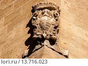 Купить «family coat of Ramon Saforteza i Pacs-Fuster, known as Conde Mal, Can Formiguera palace, portella Street, Historic-Artistic, Palma, Mallorca, Balearic Islands, Spain, Europe», фото № 13716023, снято 18 марта 2018 г. (c) age Fotostock / Фотобанк Лори