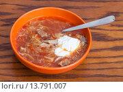 Купить «cabbage soup in ceramic bowl with tablespoon», фото № 13791007, снято 20 ноября 2019 г. (c) PantherMedia / Фотобанк Лори