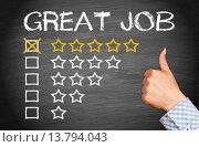 Купить «Great Job - Rating with 5 Stars», фото № 13794043, снято 16 июня 2019 г. (c) PantherMedia / Фотобанк Лори