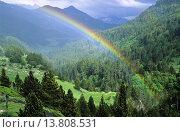 Купить «Estos Valley, Pyrenees, Huesca. Aragon. Spain», фото № 13808531, снято 5 апреля 2020 г. (c) age Fotostock / Фотобанк Лори