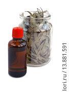 Купить «Эвкалиптовое масло и сухие листья эвкалипта на светлом фоне», эксклюзивное фото № 13881591, снято 8 ноября 2015 г. (c) Blekcat / Фотобанк Лори