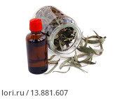 Купить «Пузырёк с эвкалиптовое маслом и сухие листья эвкалипта в банке», эксклюзивное фото № 13881607, снято 8 ноября 2015 г. (c) Blekcat / Фотобанк Лори