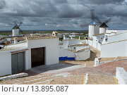 Купить «Campo de Criptana village and their typical windmills, in the Route of Don Qiuijote, Ciudad Real province, Castilla-La Mancha, Spain.», фото № 13895087, снято 19 сентября 2019 г. (c) age Fotostock / Фотобанк Лори