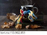 Купить «Чашка с горячим чаем в шарфике в окружении кленовых листьев, грецких орехов и печеньем», фото № 13902851, снято 27 ноября 2015 г. (c) Мустафина Елена / Фотобанк Лори
