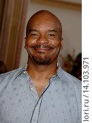 Купить «David Alan Grier - Los Angeles/California/United States - HOODWINKED TOO FILM PREMIERE», фото № 14103971, снято 16 апреля 2011 г. (c) age Fotostock / Фотобанк Лори
