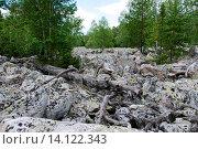 Большая каменная река. Таганай. Южный Урал (2015 год). Редакционное фото, фотограф Дмитрий Шульгин / Фотобанк Лори