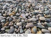 Морские камни галька фон. Стоковое фото, фотограф Алина Щедрина / Фотобанк Лори