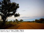 Купить «Mereenie Loop Road, Red Centre, Australia», фото № 14238783, снято 16 октября 2018 г. (c) age Fotostock / Фотобанк Лори