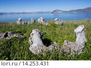 Купить «Russia , Chukotka autonomous district , Yttygran Island , Whale Bone Alley , remainings of skulls of rey whales or bowhead whales , along the beach.», фото № 14253431, снято 27 мая 2018 г. (c) age Fotostock / Фотобанк Лори