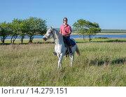 Купить «Юноша едет по полю на белом коне», фото № 14279151, снято 13 июня 2014 г. (c) Светлана Попова / Фотобанк Лори