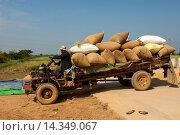 Купить «Transport einer Ladung praller Reissäcke auf einem archaischen LKW, Battambang, Kambodscha / Transport of bulging rice bags on an archaic truck, Battambang, Cambodia», фото № 14349067, снято 22 марта 2019 г. (c) age Fotostock / Фотобанк Лори
