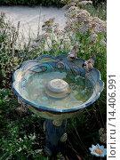 Купить «Birds-bath», фото № 14406991, снято 21 января 2019 г. (c) age Fotostock / Фотобанк Лори