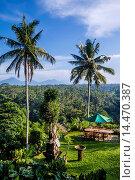 Купить «view of the Sayan River valley from Sayan Terrace Resort near Ubud, Bali Indonesia.», фото № 14470387, снято 17 мая 2013 г. (c) age Fotostock / Фотобанк Лори