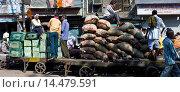 Купить «Porters at Khari Baoli spice and dried foods market, Old Delhi, India», фото № 14479591, снято 22 февраля 2019 г. (c) age Fotostock / Фотобанк Лори
