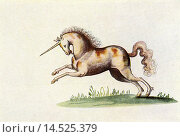 Купить «The Unicorn. After an illustration from The Livre d´Amis of Marguerite de Valois in The Illustrated London News, Christmas Number, 1933.», фото № 14525379, снято 23 июля 2019 г. (c) age Fotostock / Фотобанк Лори