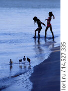 Купить «Two young girls or children playing in the water at a beach with a flock of birds in the foreground», фото № 14527335, снято 17 февраля 2019 г. (c) age Fotostock / Фотобанк Лори