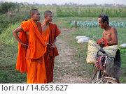 Купить «Cambodian monks speaking with a farmer, Cambodia.», фото № 14653627, снято 24 января 2019 г. (c) age Fotostock / Фотобанк Лори