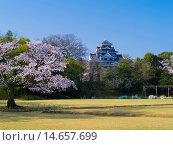 Купить «Koraku-en Garden and Okayama Castle», фото № 14657699, снято 21 августа 2018 г. (c) age Fotostock / Фотобанк Лори